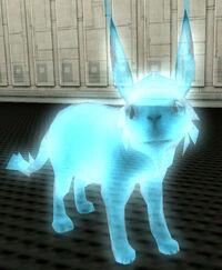 Jax-animal