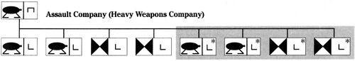 Assault company organization
