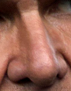 File:Nose of Han Solo.png