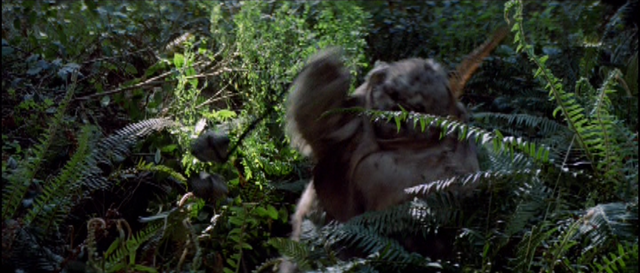 File:EwokWithBola-ROTJ.png