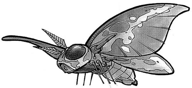 File:Moon Moth.png