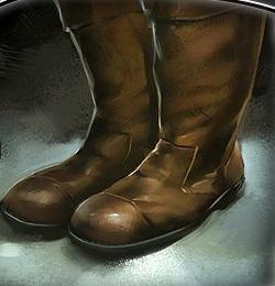 File:Standard Boots.jpg