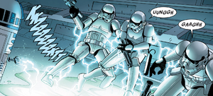 R2 fries stormies