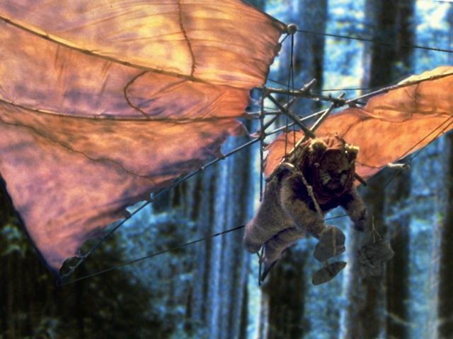 File:Hang glider btm.jpg