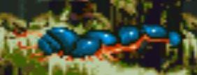 File:DagobahCaterpillar.jpg
