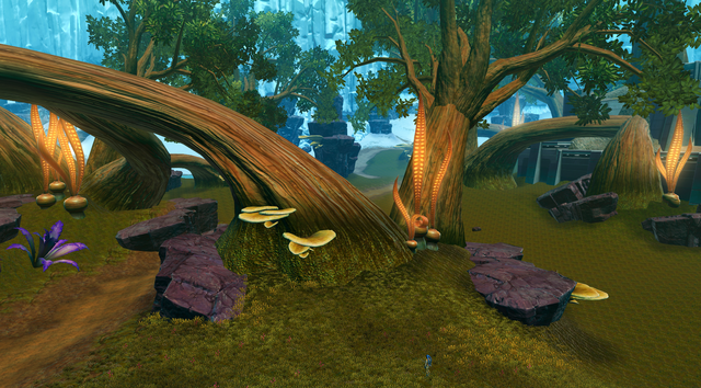File:Aphor Grove.png