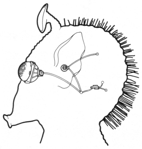 File:Hifold Sensory Package.png