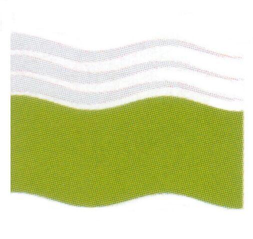 File:Boles Roor flag.jpg