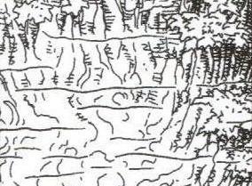 File:Equatorial swamp.jpg