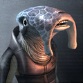 Selkath profile.png