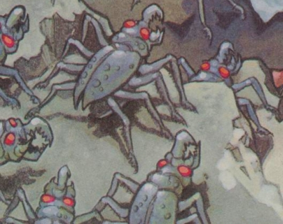 File:SpiderRoach.jpg