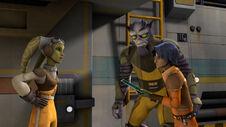Hera expels Zeba Ezra