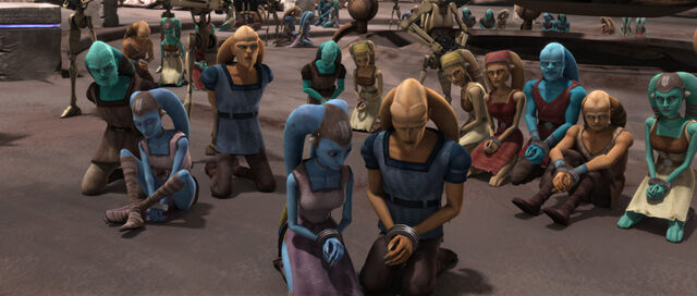 File:Innocents of Ryloth.jpg