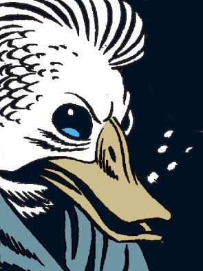 File:Space Duck.jpg