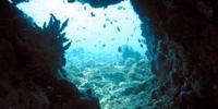 Aquwoot Zawn's Underwater Cave