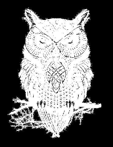 File:Owl transparent.png