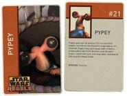 Pypey Info