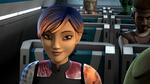 Star Wars Rebels Sabine Cat Grin