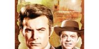 The Wild Wild West (TV series)