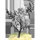 Fairy Bloom Freesia Badge 4