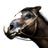 Call of Juarez Emoticon horseshead
