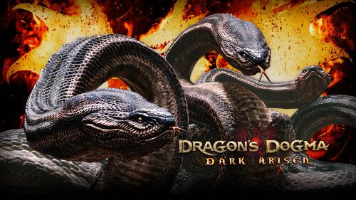 Dragon's Dogma Dark Arisen Artwork 6