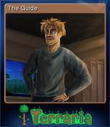 Terraria Card The Guide