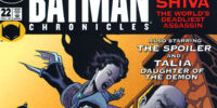 Batman Chronicles (22)