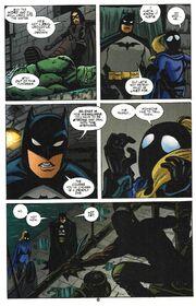 Robin 95 (02)