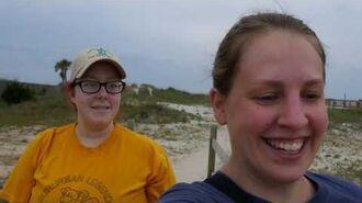 6.2.17 BONUS- Sea Turtle Search