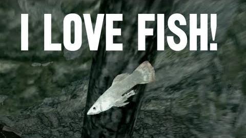 I Love Fish!-0