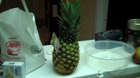 We Got A Pineapple (Day 721 - 11 15 11)