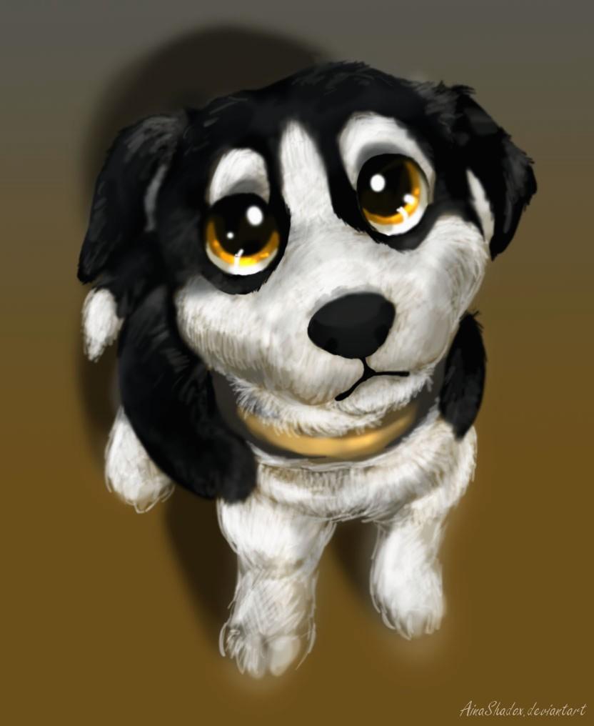 Image Puppy eyes by ainashadox
