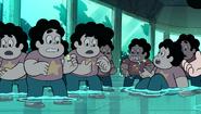 Steven and the Stevens 245