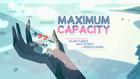 Maximum Capacity 001