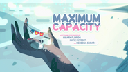 Maximum Capacity 001