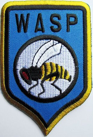 File:WASP logo.png