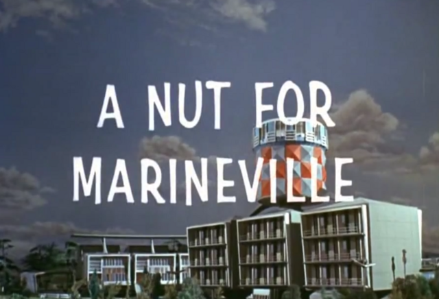 File:Nut titlecard.PNG