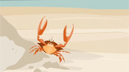 S1 E9 A crab walks towards Lo