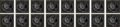 Maras Lash Scrolls (Unobtained)-icon.png