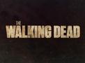 The Walking Dead Portal