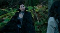 Queen Regina 312