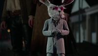 White Rabbit OW111