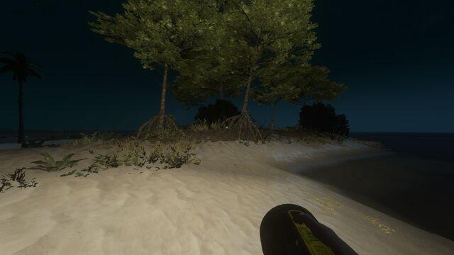 File:Torch at night.jpg