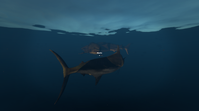 File:Marlin and Great White.png
