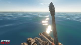Shark-raft wm