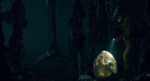 File:Stranger Things 1x08 – Egg.jpg