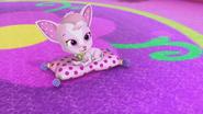 Chiffon on her pillow