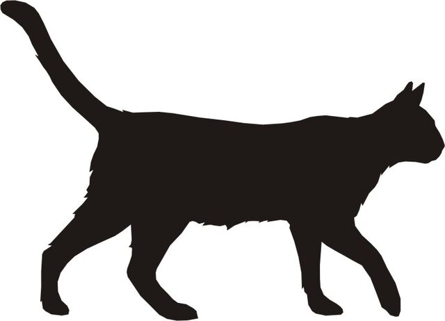 File:Dog-and-cat-silhouette-KijXz8yiq.jpeg