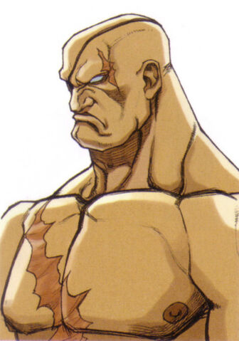 File:Street-fighter-ex-2-plus-sagat-portrait.jpg